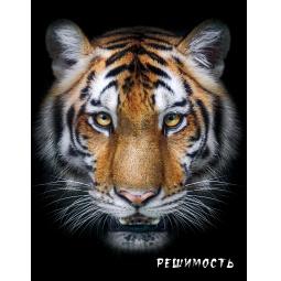 фото Блокнот настоящего хищника. Тигр