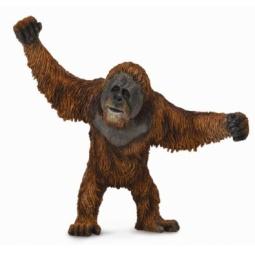 Купить Фигурка Collecta «Орангутан»