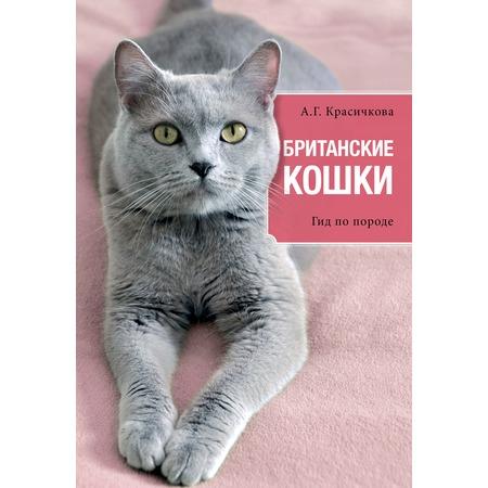 Купить Британские кошки
