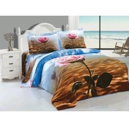 Купить Комплект постельного белья Softline 09463. Евро
