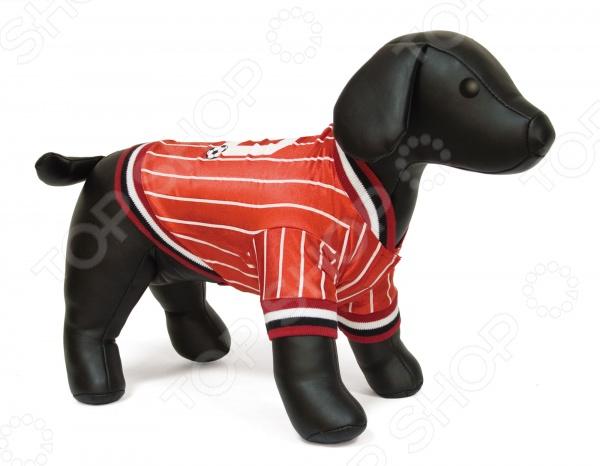 Футболка для собак DEZZIE «Бафи» футболка для собак dezzie аника