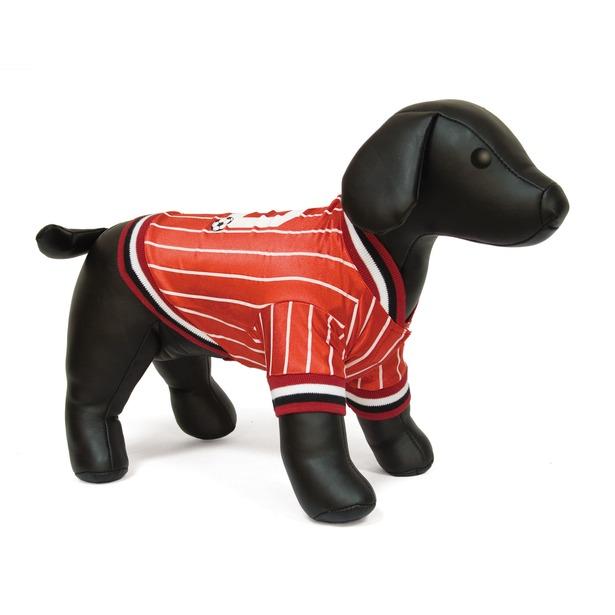 фото Футболка для собак DEZZIE «Бафи». Размер: 35 см