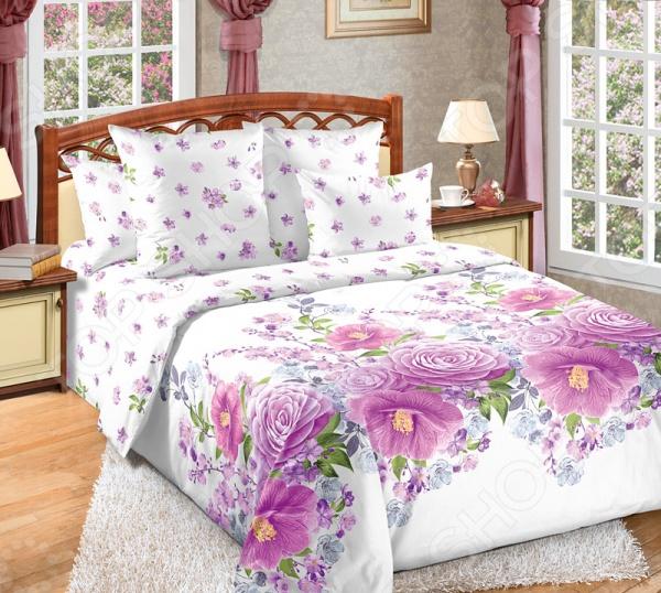 Комплект постельного белья Королевское Искушение с компаньоном «Камелия». Цвет: фиолетовый комплект постельного белья королевское искушение итальянка цвет розовый