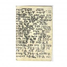 фото Обложка для паспорта Mitya Veselkov «Уравнения»
