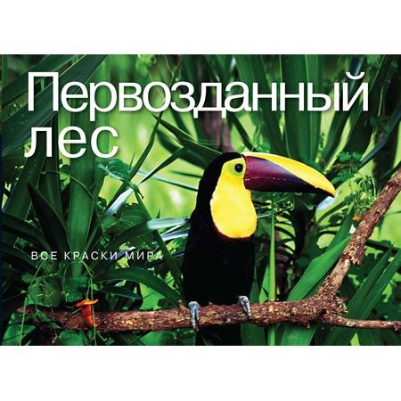 Купить Первозданный лес. Все краски мира