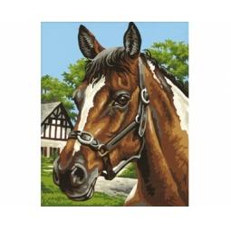 Купить Набор для рисования по номерам Schipper «Лошадь»
