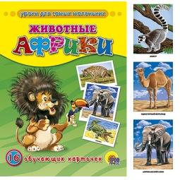 фото Животные Африки. 16 обучающих карточек