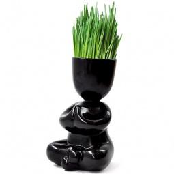 фото Набор для выращивания Экочеловеки Eco «Йог». Цвет: черный