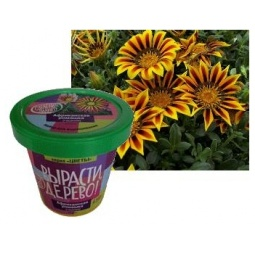 Купить Набор для выращивания Зеленый капитал Вырасти, дерево! «Африканская ромашка» zk-031