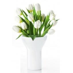 фото Ваза низкая Asa Selection Tulip