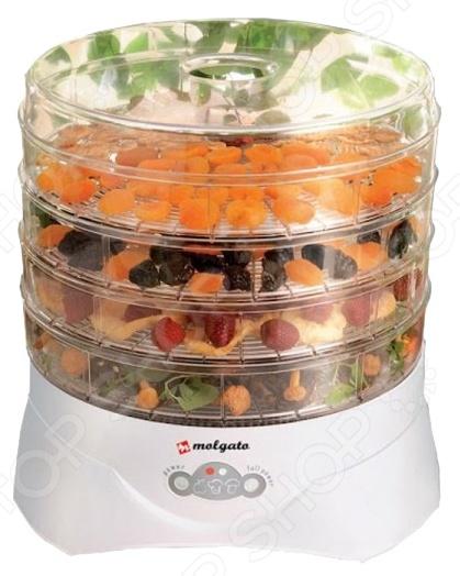 Сушилка для овощей Molgato «Здравушка» TИП 972.04