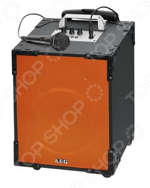 фото Аудиосистема беспроводная AEG EC 4831, Акустические системы и компоненты