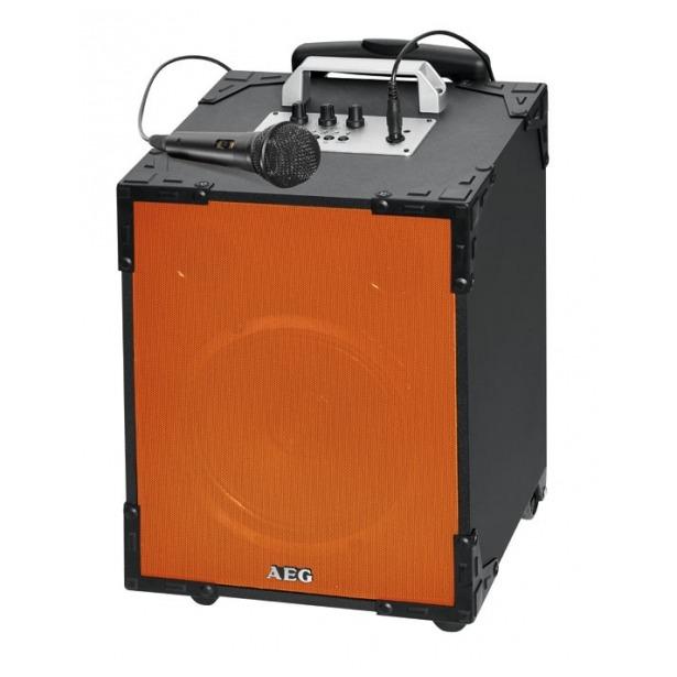 фото Аудиосистема беспроводная AEG EC 4831