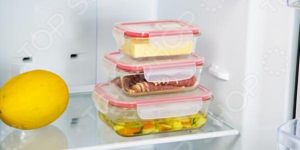 Контейнер для продуктов прямоугольный Glass Tescoma Freshbox