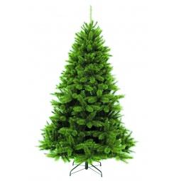 Купить Пихта декоративная Triumph Tree «Прелестная»