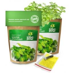 фото Набор для выращивания Happy Plant «Базилик»
