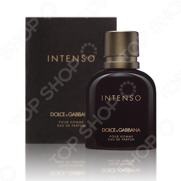 Парфюмированная вода для мужчин Dolce&Gabbana Intenso PH