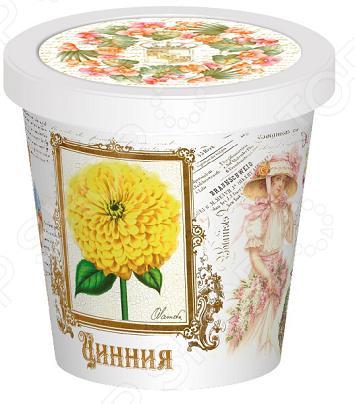 Набор для выращивания Rostokvisa «Цинния» наборы для выращивания rostokvisa набор для выращивания настурция