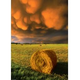 Купить Пазл 1000 элементов Heye «Наступающая буря»