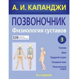 Купить Позвоночник. Физиология суставов