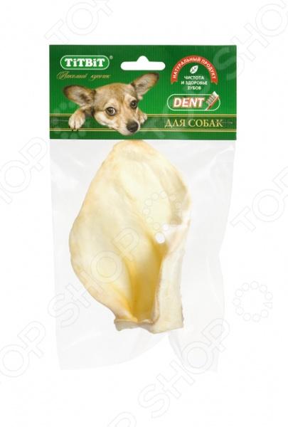 Лакомство для собак TiTBiT 9625 «Ухо телячье большое»Лакомства<br>Лакомство для собак TiTBiT 9625 Ухо телячье большое - станет отличным дополнением к ежедневному рациону вашего питомца. Лакомство представляет собой высушенное телячье ухо, и обязательно понравиться даже самым требовательным четвероногим гурманам. Продукт содержит питательные компоненты и витамины, которые являются залогом здоровья и жизнедеятельности каждой собаки. Лакомство позволит разнообразить рацион вашего любимца, удовлетворит потребность животного что-нибудь погрызть , а так же станет отличной профилактикой зубного камня.<br>