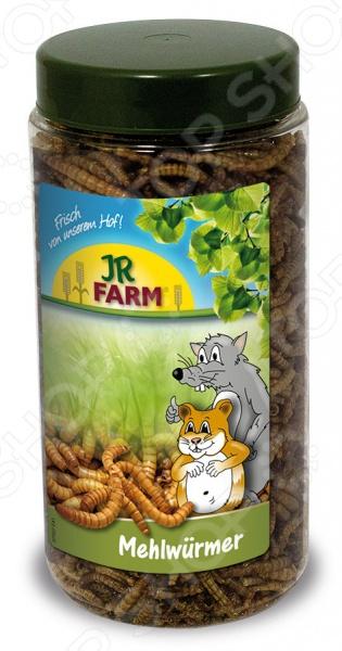 Лакомство для грызунов JR Farm MehlwuermerЛакомства для грызунов<br>Лакомство JR Farm Mehlwuermer предназначено специально для грызунов. Ваш питомец будет в восторге от своего нового блюда. Данный корм не только разнообразит рацион пушистого зверька, но и обогатит его необходимыми протеинами и аминокислотами. Угощение можно давать животному в чистом виде до 3-х чайных ложек в день, в зависимости от размера грызуна или добавлять в основной корм.<br>