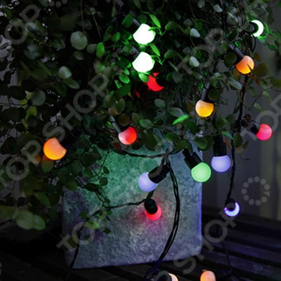 Гирлянда уличная Star Trading Party 40 LEDГирлянды<br>Гирлянда уличная Star Trading Party 40 LED поможет создать праздничное новогоднее настроение и принесет радость всем окружающим. Гирлянда предназначена для украшения как помещений, так и для улицы, потому что у данной модели есть высокая степень защиты от внешних воздействий. В последние годы вошло в традицию развешивать украшения не только внутри помещения, но и снаружи, ведь яркие переливающиеся гирлянды помогают по-настоящему ощутить праздничное новогоднее настроение детям и взрослым.<br>