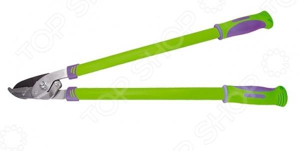 Сучкорез PALISAD 60520Сучкорезы. Кусторезы. Садовые ножницы и ножи<br>Сучкорез PALISAD 60520 это практичный режущий инструмент, который незаменим для поддержания формы деревьев и кустарников. Если вы имеете дачу или какой-либо садовый участок, то знаете как важно следить за молодой порослью на кустарниках и деревьях, ведь портиться не только общий вид растения, но и общее состояние. Этот инструмент отличается повышенной износостойкостью, он прослужит вам долгие годы даже при частом использовании, режущее лезвие изготовлено из инструментальной стали У8. Рекомендуется для обрезки живых веток диаметром до 30 мм.<br>