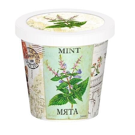 Купить Набор для выращивания Rostokvisa «Мята»
