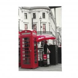 фото Обложка для паспорта Mitya Veselkov «Лондонские будки»