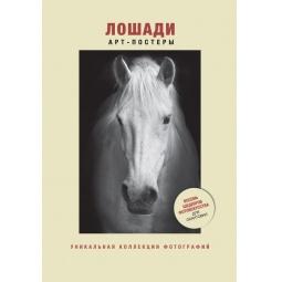 Купить Лошади. Уникальная коллекция фотографий