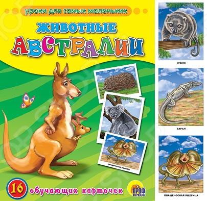 Животные. Растения. Природа Проф-Пресс 978-5-378-05780-1 Животные Австралии. 16 обучающих карточек