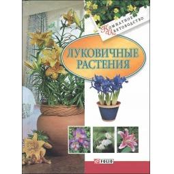 Купить Луковичные растения