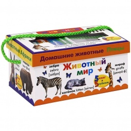 фото Животный мир. Названия животных на русском и английском языках