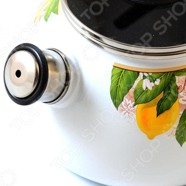 Чайник со свистком VITROSS