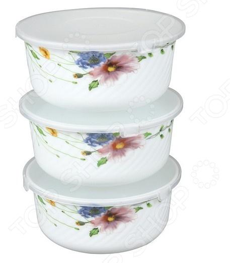 Набор контейнеров для продуктов Rosenberg 1218-646