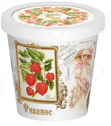 Набор для выращивания Rostokvisa «Физалис»