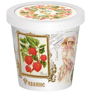 Купить Набор для выращивания Rostokvisa «Физалис»