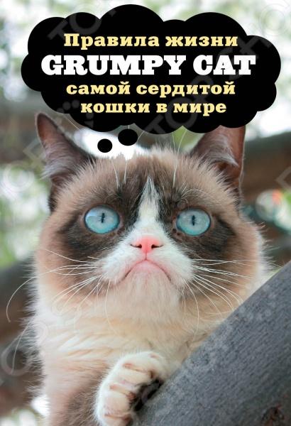 Самая сердитая кошка в мире или, в оригинале, Grumpy Cat, представляет свою абсолютно новую книгу. Grumpy известна всему миру благодаря своей забавной мордашке с вечно недовольным выражением, которое появилось из-за неправильного прикуса. Её хозяева разместили фото домашней любимицы в Интернете, и вскоре уже весь мир отправлял друг другу остроумные демотиваторы в сопровождении мордочки Сердитой кошки. В новой книге Сердитой кошки вы найдёте огромное количество новых фотографий, не знакомых даже преданным поклонникам кошки на каждой странице вас встречает как минимум одна, а то и несколько знакомых мордашек в совершенно новых ракурсах и обстоятельствах. Конечно, там есть новые демотиваторы смешнее прежних. Но главное в этой книжечке Grumpy делится с нами своей жизненной философией, объясняя нам свою точку зрения на любовь и дружбу, внутренний мир, природу, дом и семью, успехпоражение и, конечно, на счастье. Книга порадует верных поклонников Grumpy Cat, придётся по душе любителям кошек и будет, несомненно, оценена теми, кто имеет здоровое чувство юмора и не боится смеяться над собой. И над другими, конечно.