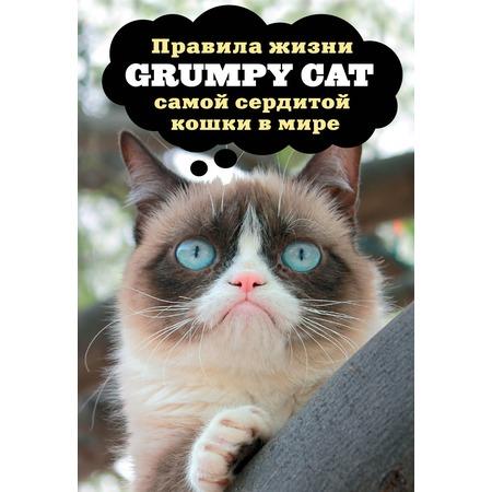 Купить Grumpy Cat. Правила жизни самой сердитой кошки в мире