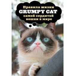 фото Grumpy Cat. Правила жизни самой сердитой кошки в мире