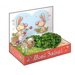 фото Подарочный набор Happy Plant «Живая открытка: Моей Зайке»
