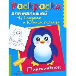 фото На Северном и Южном полюсах. Пингвиненок