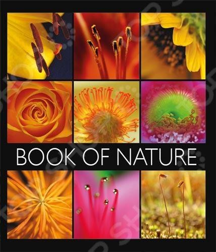 Тетрадь в клетку лакированная Пересвет «Книга природы». В ассортименте