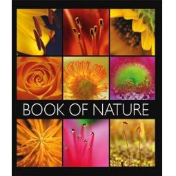Купить Тетрадь в клетку лакированная Пересвет «Книга природы». В ассортименте