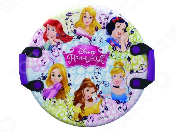 Zakazat.ru: Ледянка Disney «Принцессы»
