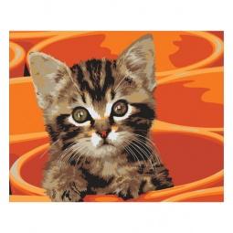 фото Набор для раскрашивания по номерам Белоснежка «Котенок в кружке»