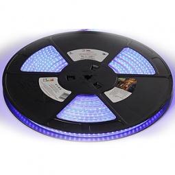 фото Лента светодиодная Эра 3528-220-120LED-IP67-eco-10m. Цвет излучаемого света: голубой
