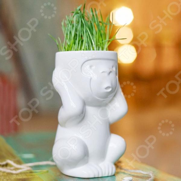 Горшок для растений Экочеловеки Eco «Игнорик»
