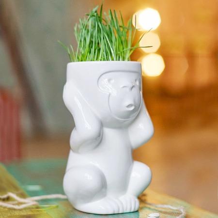 Купить Горшок для растений Экочеловеки Eco «Игнорик»